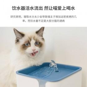 貓貓主子魔方活水機